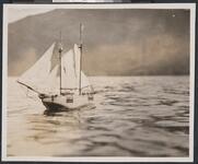 Model Ship on Lake