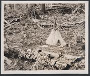 Model Tipi and Indian