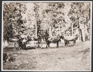 Horse and Cart with People