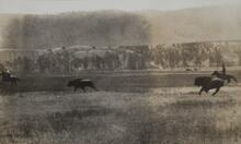Horsemen and Buffalo