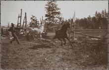 Man Lassoing Horses