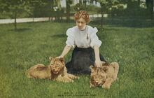 Print of Lady with Lion Cubs