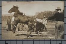 Photo of Taming Wild Pete at the Stampede in Calgery Ca. 1912