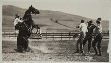 Cowboy on Bronco