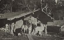Postcard of Elk Lodge