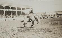 Postcard of Man on Bucking Horse